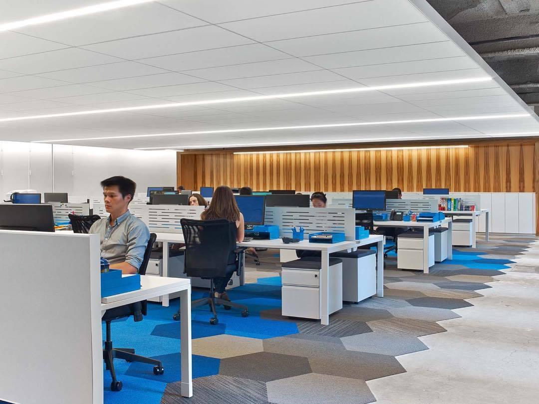 escritório com carpete